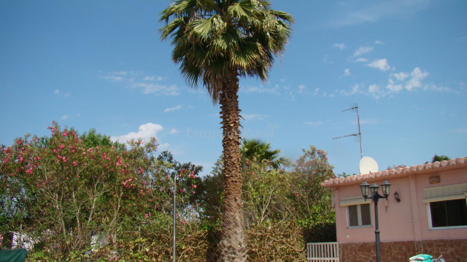 Fotos de casa manuela casa rural en deltebre tarragona for Casa rural tarragona