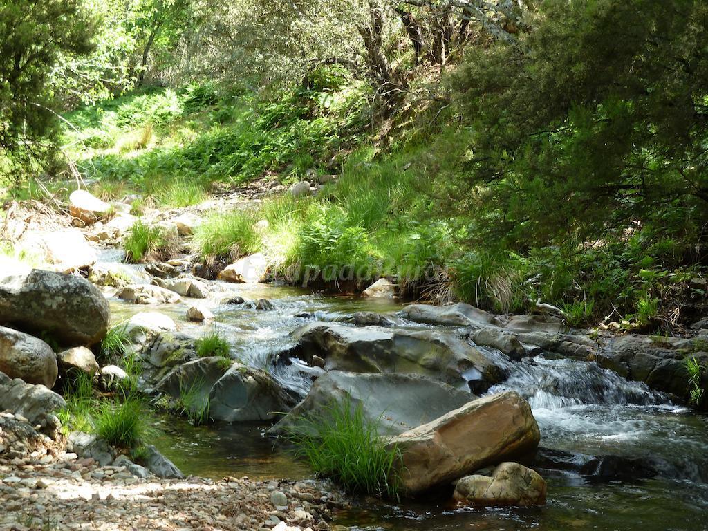 Fotos de el capricho de los montes casa rural en las - Casa rural montes de toledo ...
