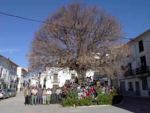 Fotos de casa cubel casa de campo em aras de los olmos - Casa de campo en valencia ...