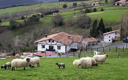 Fotos de agroturismo kasa barri casa rural en bermeo vizcaya - Lurdeia casa rural bermeo ...