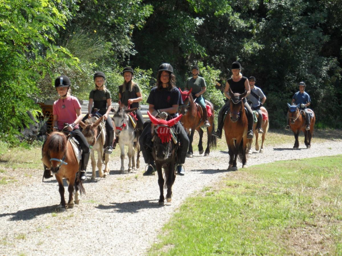 Foto di fattoria il poeta casa vacanze apontassieve for Piani di casa di fattoria di cavalli