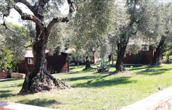 Foto di i giardini di margius casa vacanze aitri latina for Giardini di casa foto