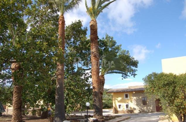 Il giardino del sole casa rural en carlentini siracusa - Il giardino del sole ...