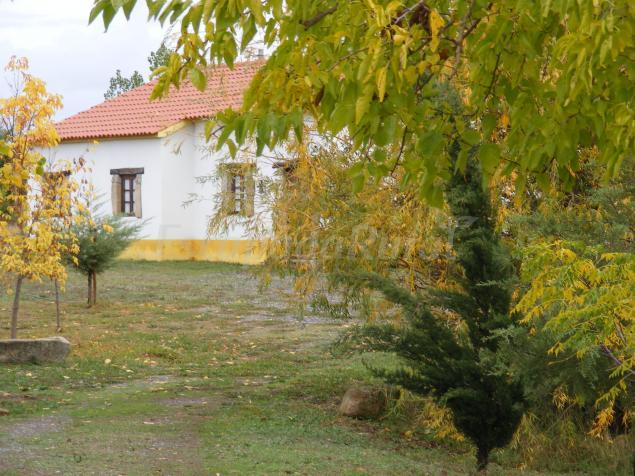 Casas rurales en castelo branco beira baixa - Casas rurales en lisboa ...
